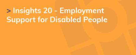 Insights 20 - Employment Support for Disabled People