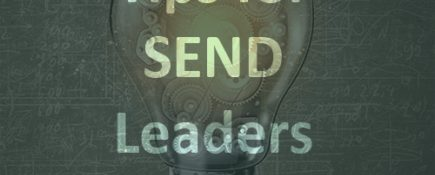 Authenticity, Vision, Strategy and Networks: Tips for a SEND Leader